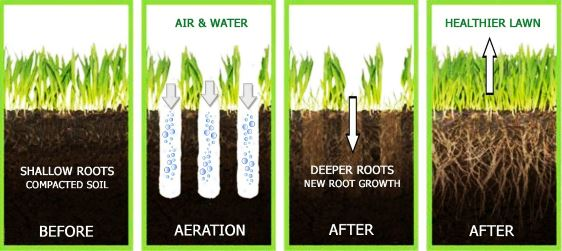 lawn aeration process diagram