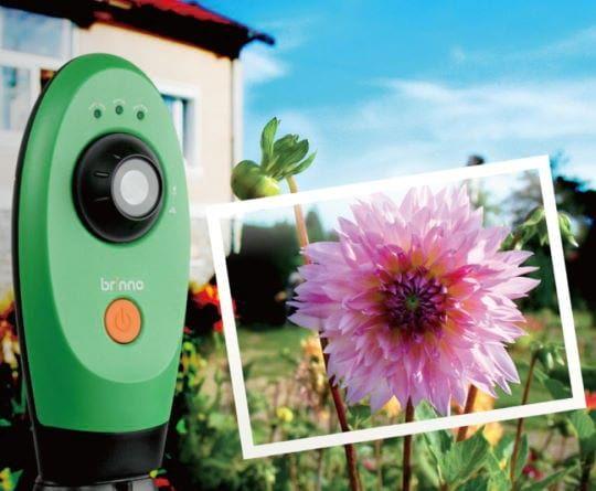 timelapse garden video camera