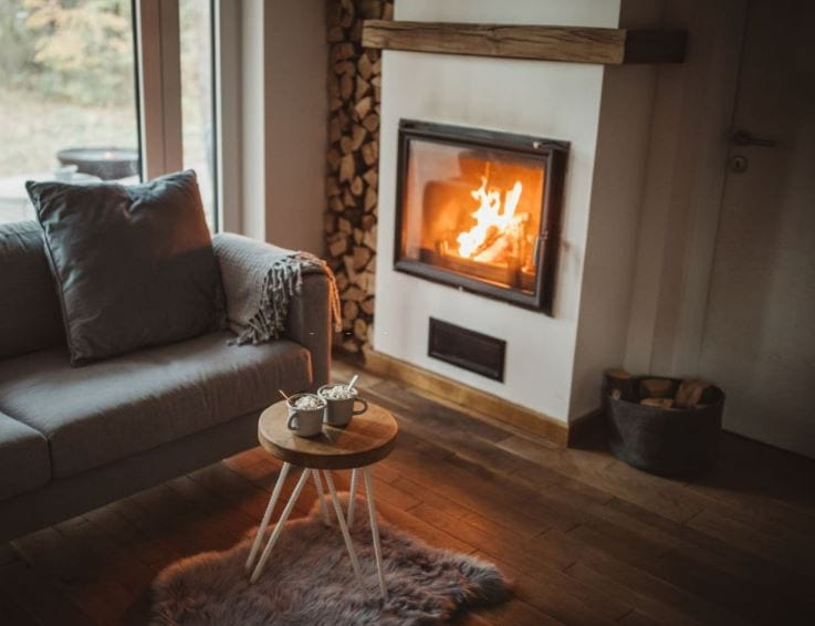fireplace-with-glass-door-near-sofa