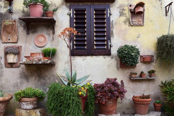 Space Savvy Tips for Small Gardens