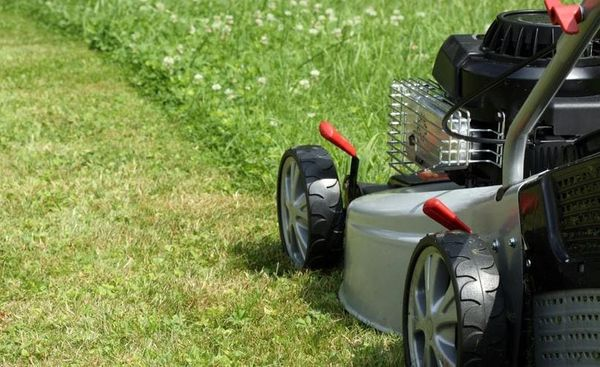 How Much Should I Charge For Lawn Mowing?