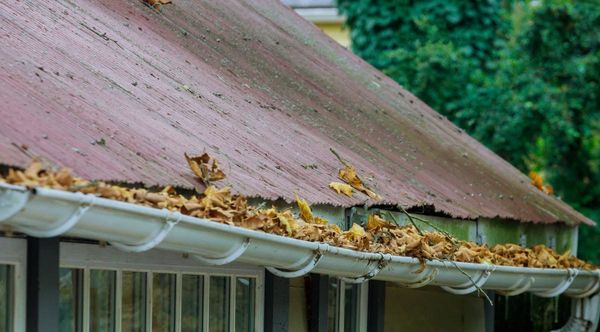 Possible Guttering Problems For New Homeowners