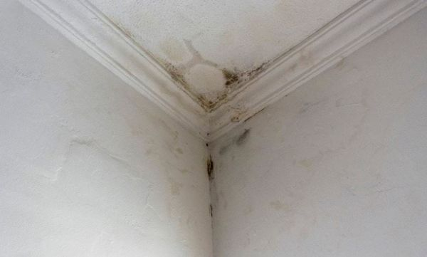 What you need to know about Ceiling Repair
